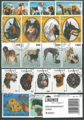 Briefmarkenpaket: Hunde (100 Briefmarken)